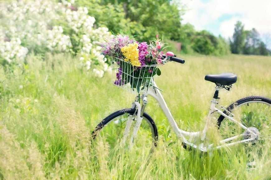 Zadbaj o rower