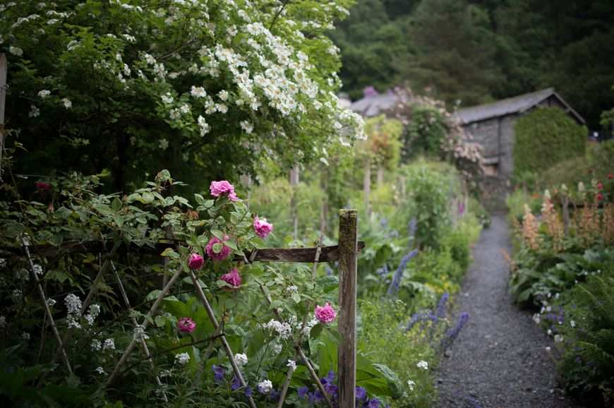 Idealnie zaprojektowany ogród